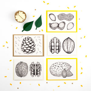 Set Of Five Illustrated Nut Recipe Notecards