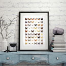 Fifty Four Butterflies Print