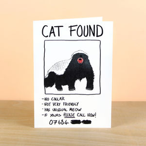 Cat Found Greetings Card Mistaken Identity - shop by category