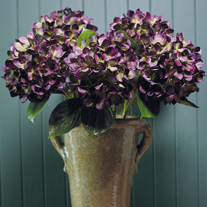 Faux Violet Hydrangea Stem - flowers & plants