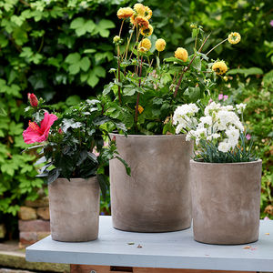 Set Of Three Concrete Planters - pots & planters