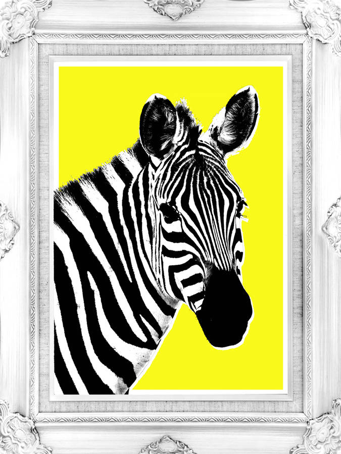 Queeny the zebra canvas art