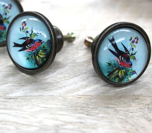 Colourful Bird Draw Knob - door knobs & handles