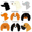 King Charles cavalier pet tags