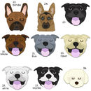 ID tags for Staffies