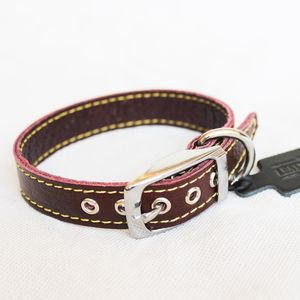 Stylish Leather Dog Collar - dogs